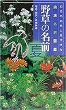 野草の名前 夏―和名の由来と見分けかた (山渓名前図鑑)