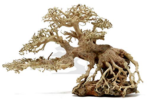 Bonsai Driftwood Aquarium Tree BSC (8 Inch Height- 12 inch Length) Natural, Handcrafted Fish Tank Decoration | Helps Balance Water pH Levels, Stabilizes Environments | Easy to Install ()