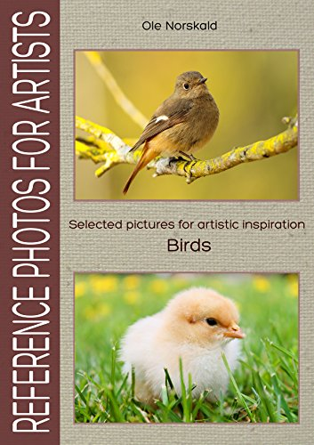 Birds. Selected pictures for artistic inspiration: Reference Photos for Artists