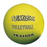 S&S Worldwide Spectrum Volleyball Trainer, Yellow - Oversize