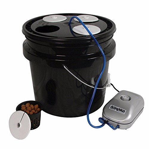 HTGSupply 3.5-Gallon Bubble Boy 4 Banger Deep Water Culture (DWC) Hydroponic Bucket System