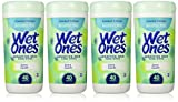 Health & Personal Care : Wet Ones Sensitive Skin Hand Wipes, Extra Gentle 40 Count Canister (Pack of 4)