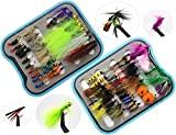 Best Salmon Flies - Dry Wet Fly Fishing Flies Lures Tackle Box Review