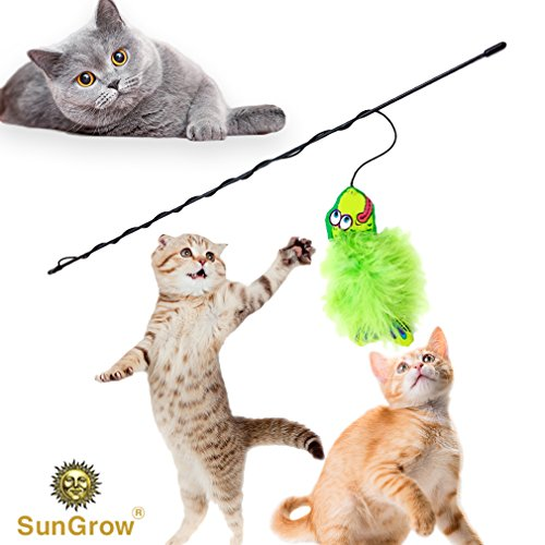SunGrow Wand Cat Toy (1 pc) - Green Fabric Fish Toy with Soft Rabbit Fur - Interactive Fishing Rod Pet Toy with Long, Flexible Handle - Filled with Catnip to Satisfy Calico, Maine Coon and Tabby Cats ()