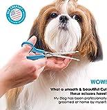 BOSHEL Dog Grooming Scissors Set - 2 Pet Grooming