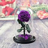 DeFancy Preserved Rose in Glass Dome with Gift Box (Purple)