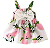 Rjxdlt Baby Girls Sling Bowknot Lemon Print Skirt Dress 0-6 Months Pink