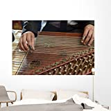 Fingers Playing Arabian Qanon Wall Mural by Wallmonkeys Peel and Stick Graphic (72 in W x 48 in H) WM364870