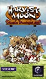 Harvest Moon - Another Wonderful Life Game Cube Instruction Booklet (Nintendo Game Cube Manual Only) (Nintendo Game Cube Manual)