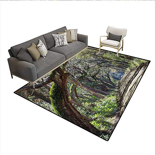 Rug,Road in The Forest with Trees Botany South Carolina National Park Eco Picture,Floor Mat for Kids,Fern Green UmberSize:5'x8'