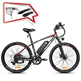 Rattan Challenger 26 Inch Electric Bicycle 48V
