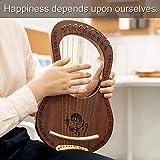 Lyre Harp, Vangoa 10 Steel String Solidwood
