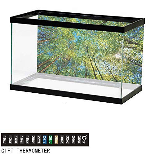 wwwhsl Aquarium Background,Forest,Evergreen Back Nature Area Mother Earth Lime Trunk Mangrove Flora Willow Photography,Green Fish Tank Backdrop 24