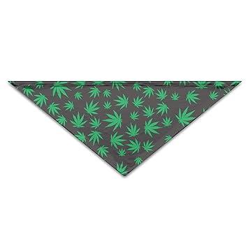 RGHUBTA Pañuelo verde para perros, gatos, mascotas, accesorios de vacaciones, collar, pañuelo: Amazon.es: Hogar