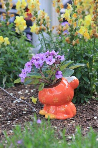 Red Frog Flower Pot