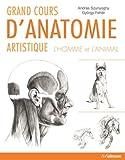 grand cours d anatomie artistique l homme et l animal