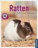 Ratten: halten, pflegen, beschäftigen (Mein Tier)