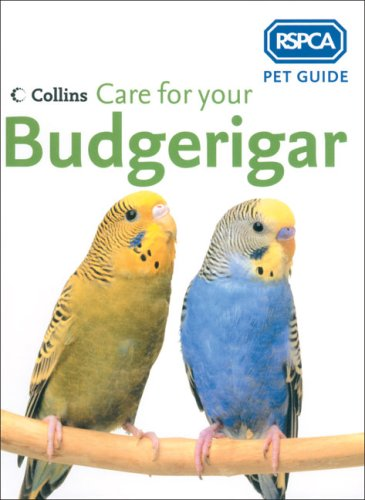 Care for Your Budgerigar (RSPCA Pet Guides)