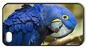 Hipster good iPhone 4S cover hyacinth macaw PC Black for Apple iPhone 4/4S