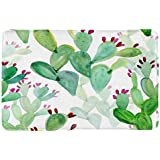 "ALFALFA Bath Rug, Non Slip Mat, Bathmat, Doormat, Thick Synthetic Sponge and Super Soft Microfiber Flannel Fabric,Absorbent, Spring Theme 16"" W x 24"" L (40 x 60 cm)-The Cactus"