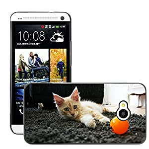 Hot Style Cell Phone PC Hard Case Cover // M00109379 Cat Pet Hangover Longhair Cat // HTC One M7