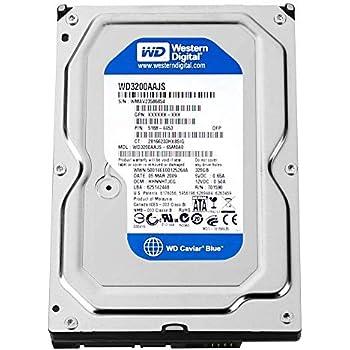 Western Digital (WD) Caviar Blue 320 GB (320gb) SATA II 7200 RPM 8 MB Cache Bulk/OEM Desktop Hard Drive for PC, Mac, CCTV DVR, NAS, RAID- 1 Year Warranty