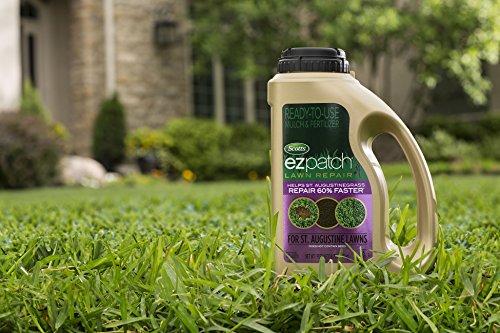 Buy scotts lawn repair