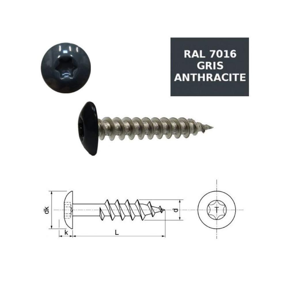 Vis penture 6x20 mm Inox A2 RAL 7016 gris anthracite par 50