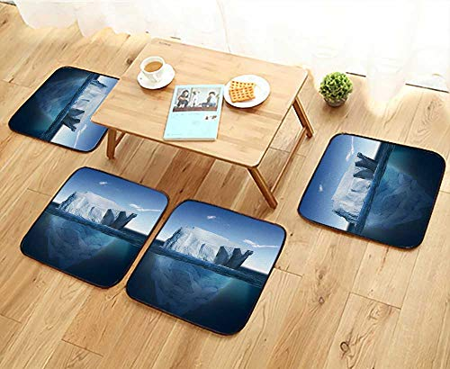 Elastic Cushions Chairs Antarctic Iceberg in The Ocean Beautiful Polar sea Background for Living Rooms W29.5 x L29.5/4PCS Set