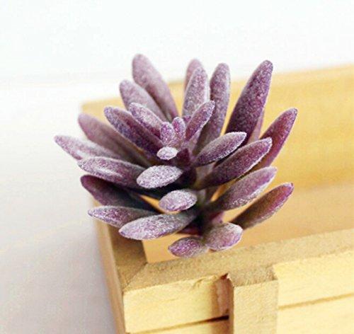 Dutch Brook 5 Pcs Purple Simulation Succulents Artificial Cactus Plants for Home Office Garden Decor (Sent Randomly)