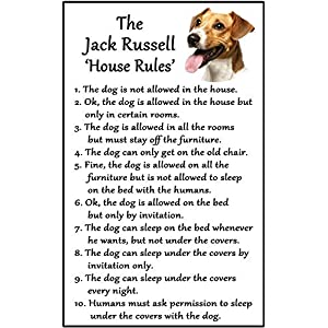 """hiusan Jack Russell Terrier Gift - House Rules Funny Fridge Stickers Warning Stickers Peel and Stick Kitchen Home Decor 6""""x4"""" 1"""