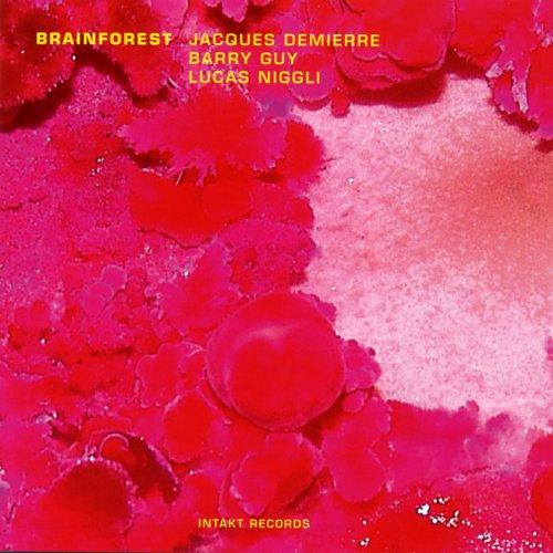 CD : Barry Guy - Brainforest (CD)