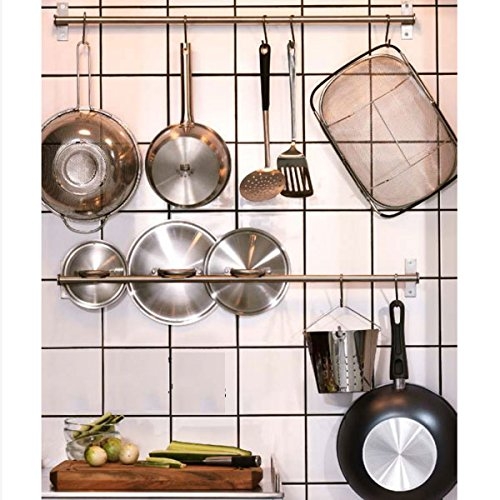 Fasthomegoods Stainless Steel Gourmet Kitchen Wall Rail with 10 Large S Hooks COMIN16JU015950