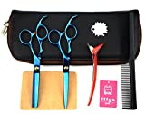 LILYS PET 6.0'' Professional Barber Razor Edge sakura Hairdressing Scissors and Hair Thinning Scissors/Shears Set (Blue)