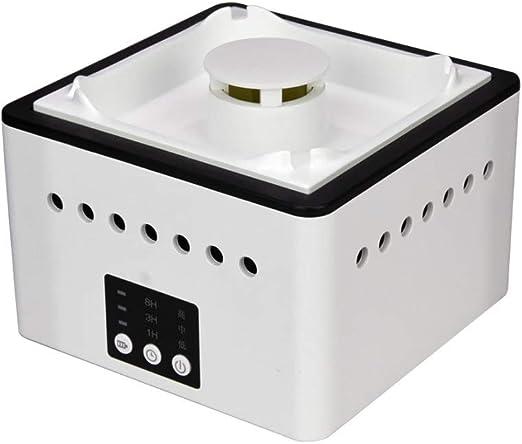 FLYWM Aire purificador Aire ambientador ionizador Ionic PM2.5 ...