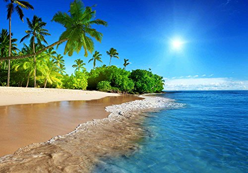FHZON 10x7ft Summer Sunshine Backdrop Beach Coast Tropical Paradise Blue Sea Sky Coconut Tree Photography Background Themed Party YouTube Backdrop Photo Booth Studio Props FH1200 by FHZON (Image #5)