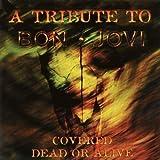 Dead or Alive: Bon Jovi Tribute