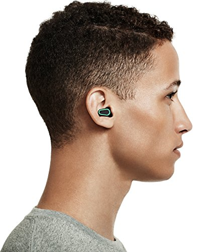 Dubs Noise Cancelling Music Ear Plugs Acoustic Filters