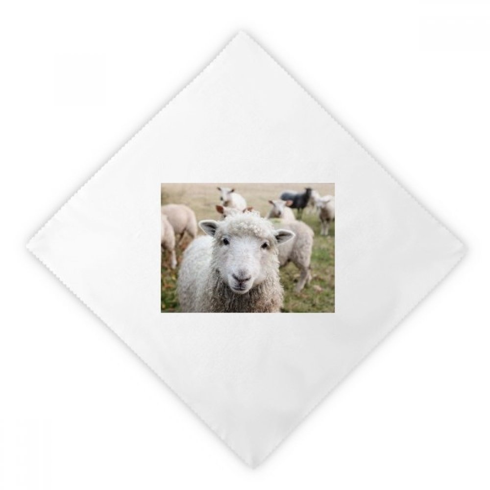 DIYthinker Terrestrial Organism Sheep Animal Picture Dinner Napkins Lunch White Reusable Cloth 2pcs