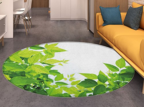 Plant Round Area Rug Carpet Beautiful Photo of Fresh Leaves Spring Season Birth of Nature Happiness Ecology Living Dining Room Bedroom Hallway Office Carpet Apple Green