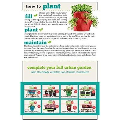 BloemBagz Big Herb Planter, 5 Gallon, Peppercorn : Garden & Outdoor