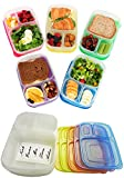 (US) Bento Lunch Box Containers 3 Compartment With Waterproof Labels Included Set of 5