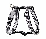 Red Dingo Reflective Safety Dog Harness, Large, Black, My Pet Supplies