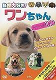 ワンちゃんスペシャル100 [DVD]