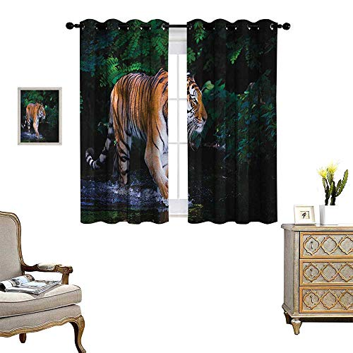 Warm Family Safari Window Curtain Drape Tiger in Water Stream Hunting Danger Trees Tropical Pond Hiding Captive Decorative Curtains for Living Room W63 x L72 Green Orange Brown ()