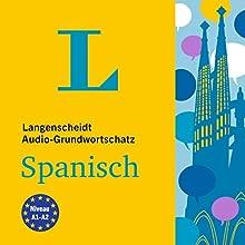 Langenscheidt Audio-Grundwortschatz Spanisch Hörbuch von div. Gesprochen von: Fabian von Klitzing