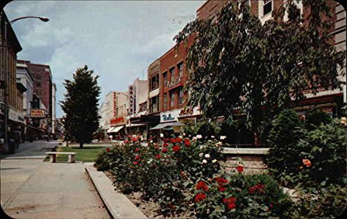 Flowers Adorn the Grounds of the Famed Burdick Street Mall Kalamazoo, Michigan Original Vintage - Malls Kalamazoo