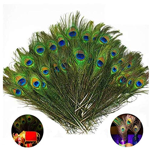 Fellibay Craft Peacock Feathers Natural Peacock Tail Eyes Feathers for Halloween Christmas Decor(50pcs) -