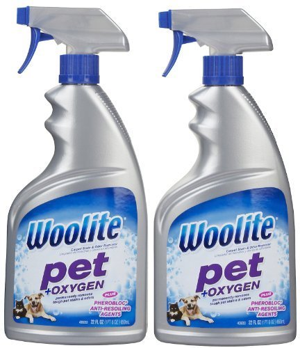 Woolite Pet Stain & Odor Remover Carpet Cleaner + Oxygen, 22 oz-2 pk (Best Carpet Stain And Odor Remover)