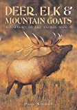Deer, Elk, and Mountain Goats, Paul Sterry, 1577170784